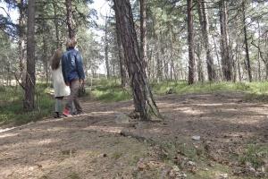 I skogen 1